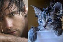 kedi adam