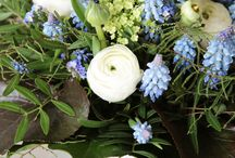 Kwiaty i ogród