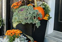 Fall Decor!! / by Leslie Perry
