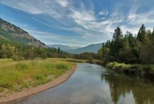 Real Estate Auctions in Montana / Check out the current Real Estate Auction taking place in Noxon Montana near the Cabinet Mountain Wilderness Area, Bull Lake, Noxon Reservoir, Lake Pend Oreille as well as Schweitzer Mountain Ski Resort and Turner Mountain Ski Resort.  http://www.realestateauctionsinmontana.com
