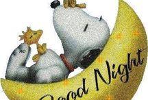 Καληνύχτα.
