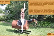 Equicizer Equestrian Fitness Exercises / Recommended Method: choose 4-6 warmup exercises, and 4-6 strengthening exercises.  Cycle through the routine one to three times depending on your exercise requirements.  Next time, select a different series to keep things fresh.  Repeat them 4-10 times before switching to a different exercise.