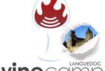 Vinocamp Languedoc