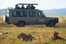 Africa's Big Five Safaris / Show-casing Africa's wildlife safaris from all corners of the continent.