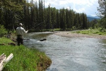 Montana Ranches / Photos of Ranches in Montana. We represent some of the finest ranches for sale.