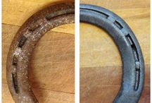 Horse shoe ideas