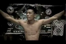 Martial Arts Thai Boxing & MMA Fights