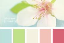 Colour imaging