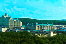 Enjoy the View / Enjoy the stunning scenery that is the backdrop of Foxwoods Resort Casino. / by Foxwoods Resort Casino
