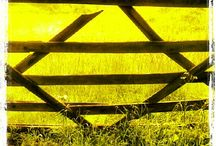 Gates. That is all. / Five bar. Maybe more. Probably rural. Baling twine may be involved.