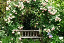 jardin romantique