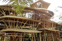 Bamboo constructions
