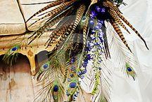 fantastic peacock