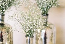 Reception decorating Ideas / Flowers, decor, venue settings.