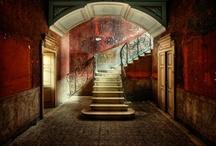 Photography & Art / by Jordyn Steinmann