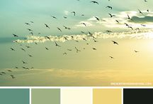 Color Palettes / Color inspiration for projects/ home decorating  / by Adora Diaz