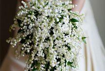 svatby / svatební dekorace