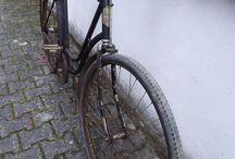 Fahrrad Brandenburg