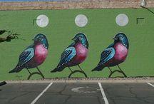 Phoenix Arizona Street Art / by Debbie Dellarocca