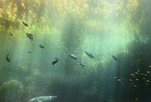 under vann