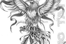 fenix lintu