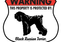 Black Russian Terrier Signs and Pictures / Warning and Caution Black Russian Terrier Signs. https://www.signswithanattitude.com/black-russian-terrier-signs.html