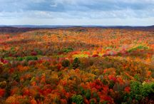 Upper Peninsula of Michigan / by Cynthia P.