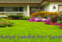 Flower - Gardening Ideas / New ideas and information about flowers and garden.