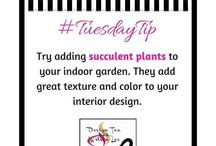 Tuesday Tips / A compilation of simple design tips to bring Clarity, Balance & Beauty® to your interiors.