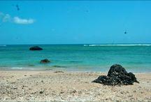 Beach ♥♥