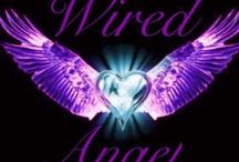 Wired Angel / wired jewellery