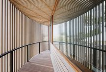 Canopy-Sculptural-Dynamic-Delicate-Organic-Form