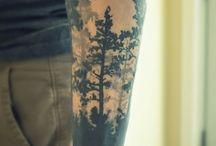 Păduri Laurențiu