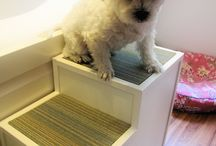 Pet stairs / by Wendy Ashburn