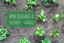 Childrens gardening tools / Childrens gardening tools
