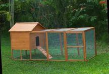 Домик для птицы