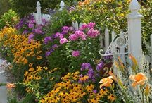 Fence&flowers