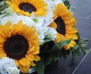Debora & Jobber : sunflowers lovers