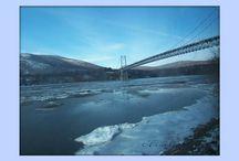 Bridges / Bridges from all over the world