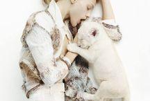 Pets & Animals / Pets