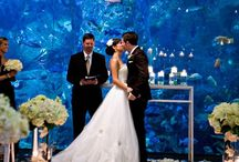 Wedding Style: Modern / Great modern styled wedding ceremony ideas, with modern lighting and decorations