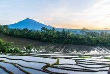 Bali / Photographies de Bali