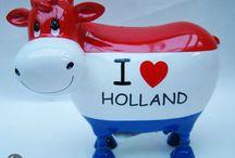 Nederlands 4