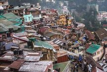 Shimla / by Kim Dickson Greeff