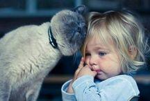 Tenderness feel