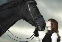 Equestrian Sport Psychology