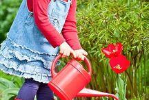 Homeschooling: Montessori