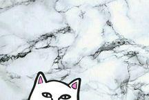 Cat w/ middle finger