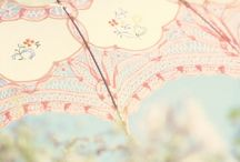 Parasole & Umbrella