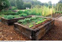 Úžitková záhradka